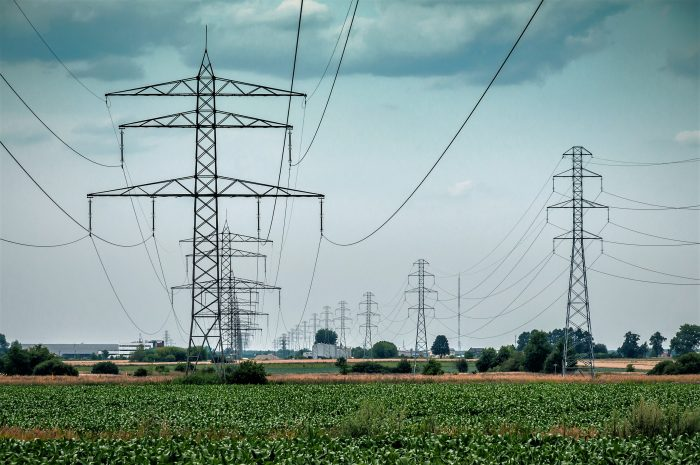RTE develops a sustainable grid